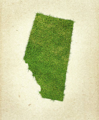 Canadian Mixed Media - Alberta Grass Map by Aged Pixel