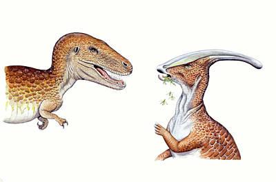 Paleozoology Photograph - Albertosaurus And Parasaurolophus by Deagostini/uig