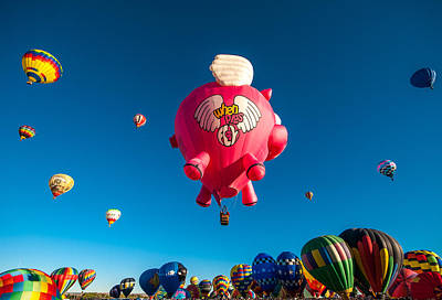Photograph - Albuquerque Balloon Fiesta 13 by Lou  Novick