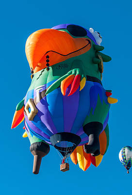 Photograph - Albuquerque Balloon Fiesta 9 by Lou  Novick