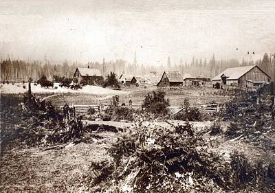 Photograph - Alder Washington Settlement by Sadie Reneau