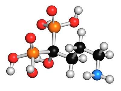 Alendronic Acid Osteoporosis Drug Art Print