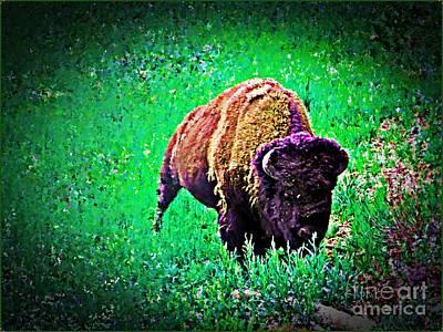 Bison Digital Art - Alert Bison by Ali Khosro