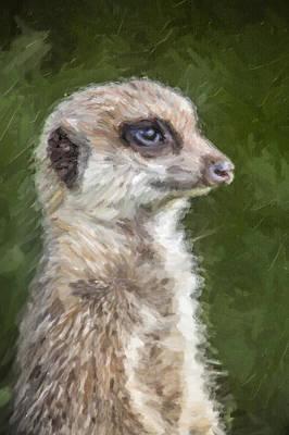 Meerkat Digital Art - Alert Meerkat by Liz Leyden