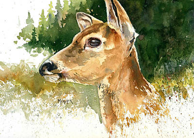 Whitetail Fawn Painting - Alert by Spencer Meagher