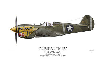 Aircraft Painting - Aleutian Tiger P-40 Warhawk - White Background by Craig Tinder
