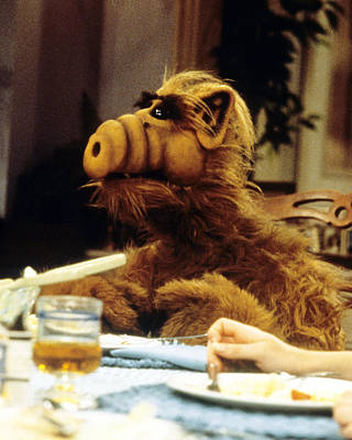 Tv Photograph - Alf  by Silver Screen
