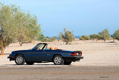 Photograph - Alfa By The Sea by Dick Botkin
