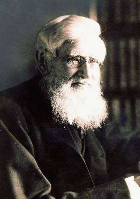Alfred Photograph - Alfred Russel Wallace by American Philosophical Society