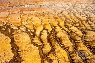 Photograph - Algae Patterns At The Grand Prismatic Spring In Midway Geyser Basin by Fred Stearns