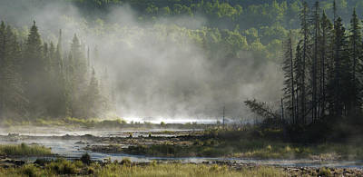 Photograph - Algonquin Early Morning by Ron Haist