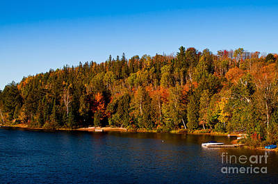 Photograph - Algonquin Park - Rock Lake by Les Palenik