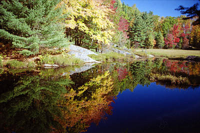 Algonquin Reflection Art Print