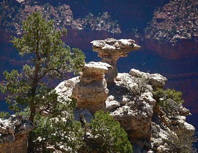 Photograph - Alien Rocks by Leticia Latocki