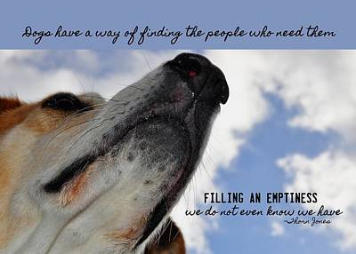 All Dogs Go To Heaven Quote Art Print