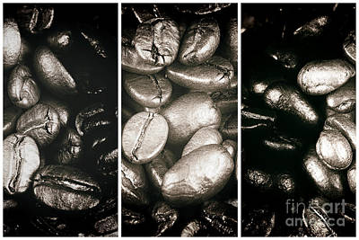 Photograph - All In The Beans Panels by John Rizzuto