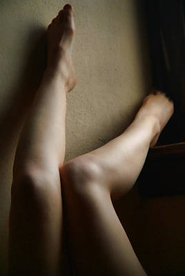 Photograph - All Legs by Michael McGowan