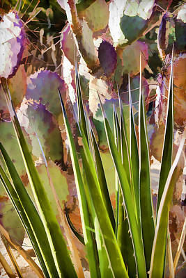 Impressionism Photos - All pointy and sharp by Scott Campbell