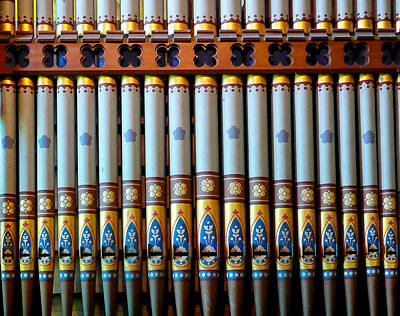 Photograph - All Pretty In A Row by Jenny Setchell