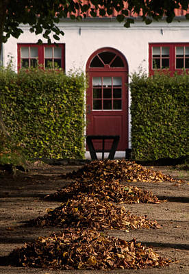 Fallen Leaf Photograph - All Seasons Lead To Your Door by Odd Jeppesen
