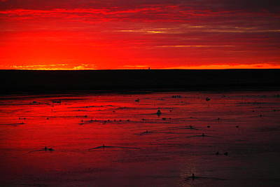 Clous Photograph - All The Birds Frolicking At Sunset by Jeff Swan
