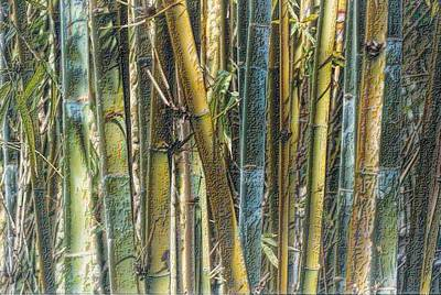 Photograph - All The Colors Of The Bamboo Rainbow by Nadalyn Larsen