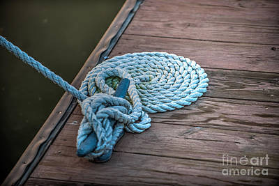 Photograph - All Tied Up by Dale Powell