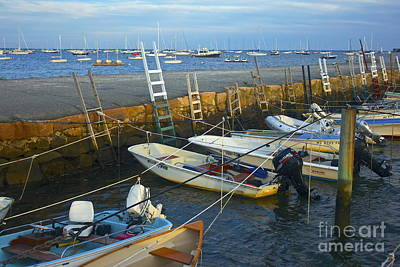 All Tied Up In Mattapoisett Art Print by Amazing Jules