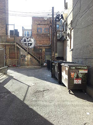 Photograph - Alley 21 by Zac AlleyWalker Lowing
