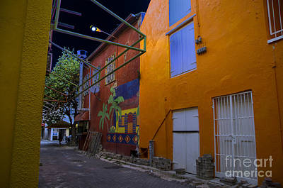 Photograph - Alley by Louise Magno