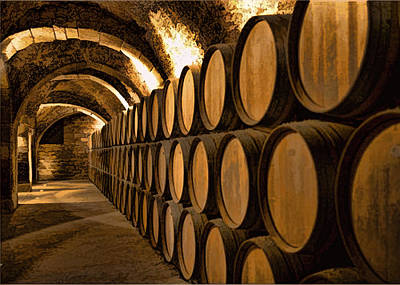 Alley Of Barrels At The Winery Art Print