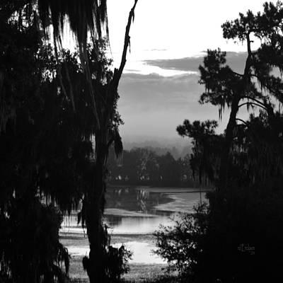 Photograph - Alligator Lake At Dawn by rd Erickson