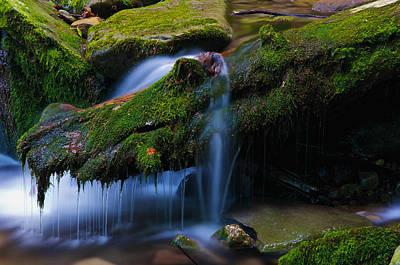 Photograph - Alligator Of Buttermilk Falls by Steven Mancinelli