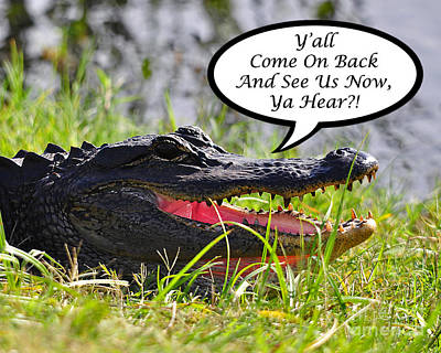 Alligator Digital Art - Alligator Yall Come Back Card by Al Powell Photography USA