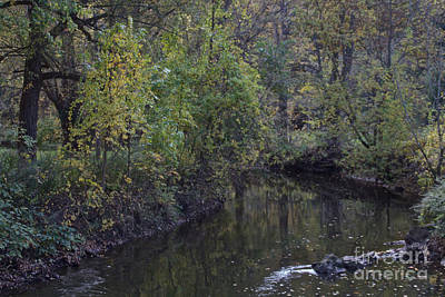 Photograph - Allison Creek In The Fall by William Norton