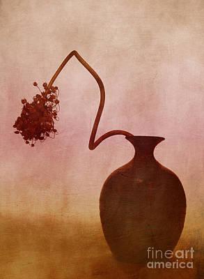Onion Photograph - Allium by Elena Nosyreva