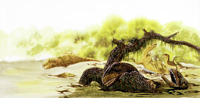 Paleozoology Photograph - Allosaurus Dinosaurs Drowning by Deagostini/uig