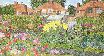 Allotments And Dahlias Art Print