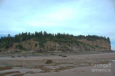 Photograph - Alma Bay Of Fundy by Cheryl Baxter