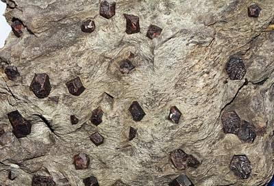 Almandine Crystals In Schist Art Print
