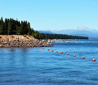 Photograph - Almanor by Holly Blunkall