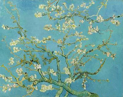 Netherlands Painting - Almond Blossom by Vincent van Gogh