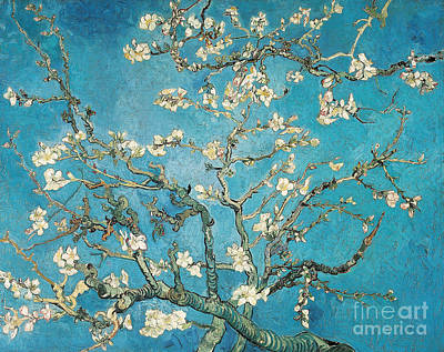 Bushes Painting - Almond Branches In Bloom by Vincent van Gogh