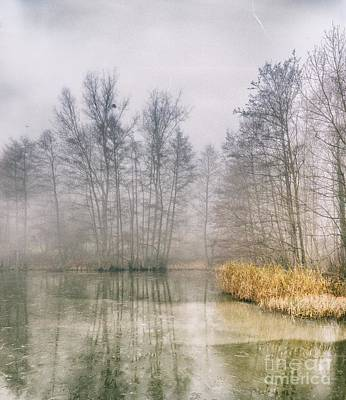 Photograph - Almost Frozen Almost Winter by Maciej Markiewicz