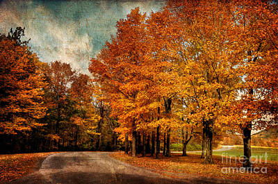 Country Road Digital Art - Almost Home by Lois Bryan