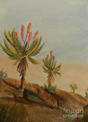 Aloes Art Print