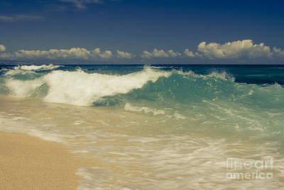 Coastal Quote Wall Art - Photograph - Aloha Hookipa Ulu Wehi  - The Hidden Treasure by Sharon Mau