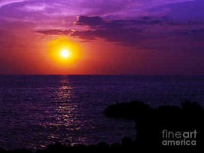 Photograph - Aloha I by Patricia Griffin Brett