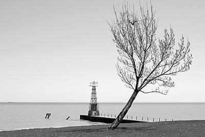 Photograph - Alone Agains The Wind by Milena Ilieva