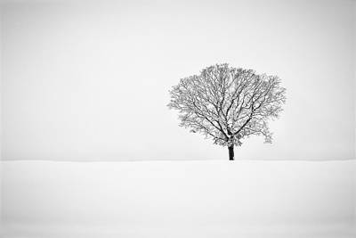 Photograph - Alone by Eduard Moldoveanu
